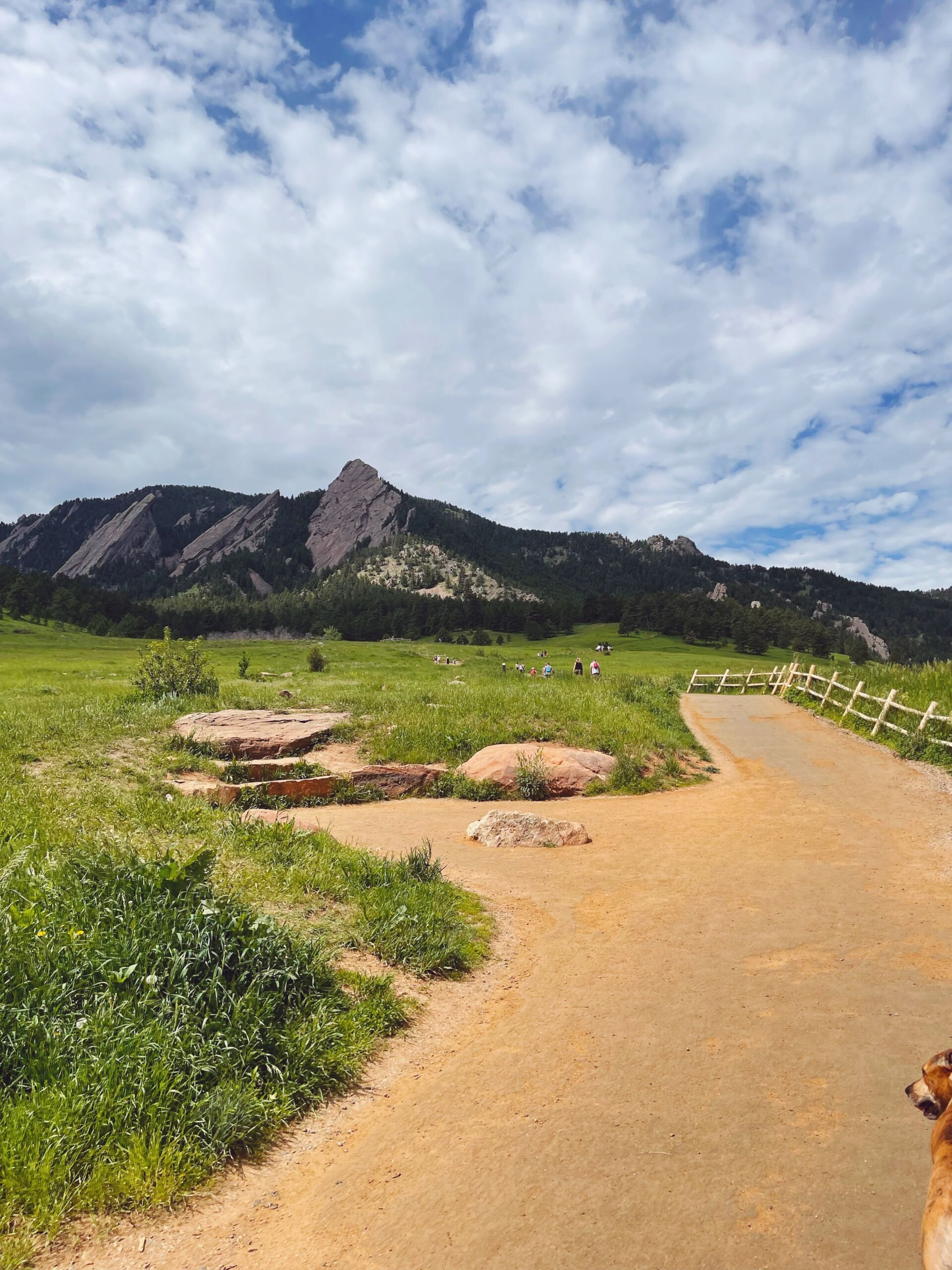 Chautauqua Park Trail in Boulder Colorado